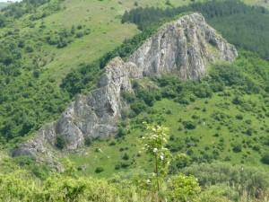 Местност Петлюка